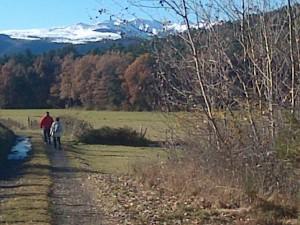 Cours marche nordique